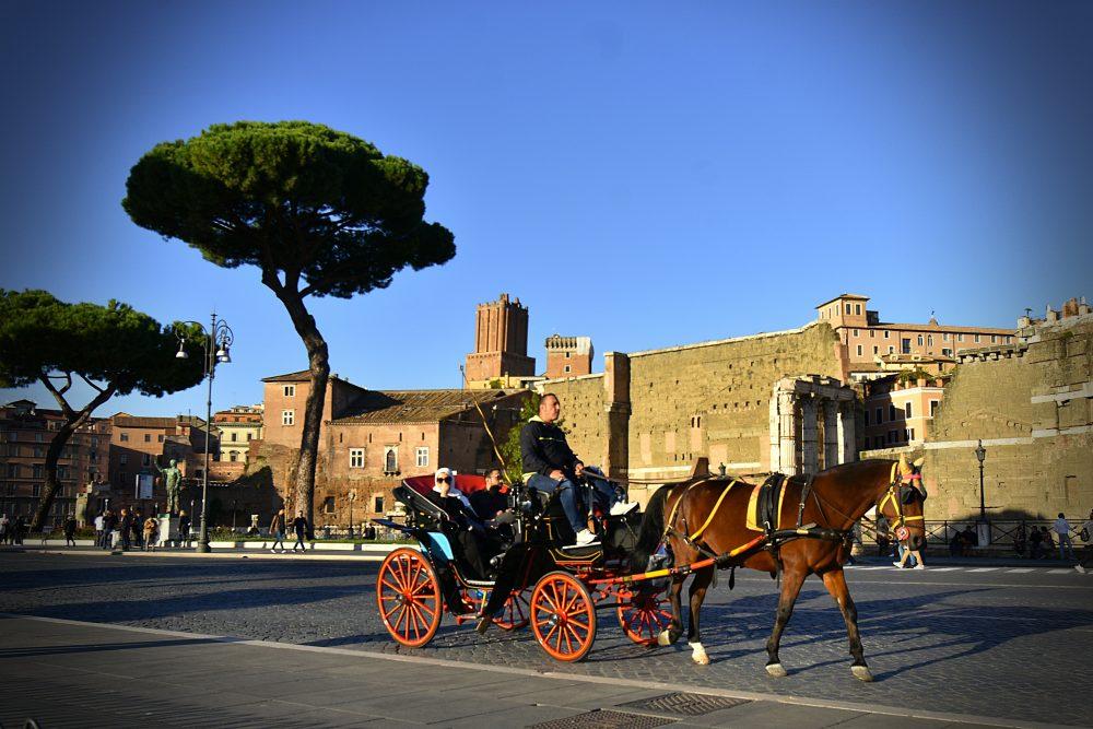 Na otočku v Ríme